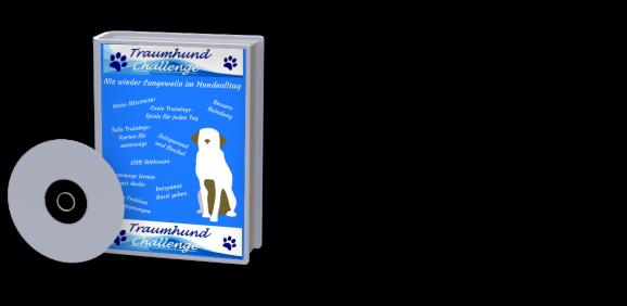 Traumhund-Challenge - Nie wieder Langeweile beim Gassigehen